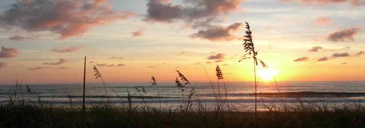 Beach2009