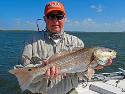 Gulf Coast Limited Fishing Charters <br>gcl2fish@live.com<br>http://www.fishpineisland.com<br>(239)283-7960<br>