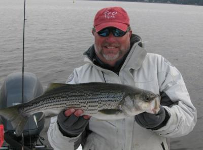 Capt. Gary witha nice New Bern striped bass