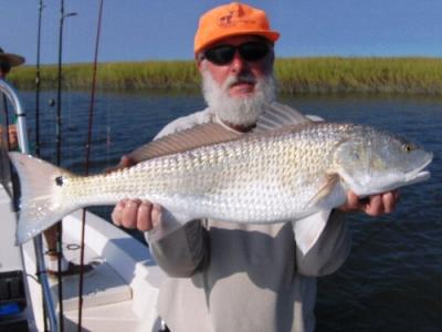 Capt.Mike Dennis<br>Cape Fear Guide<br>www.capefear-guide.com