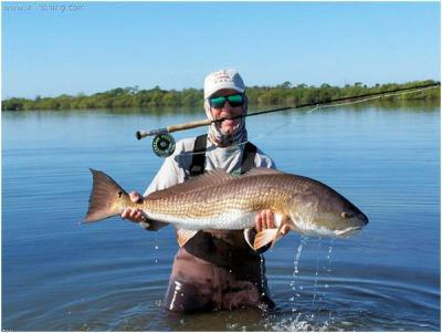 Captain Tom Van Horn&lt;br&gt;Mosquito Coast Fishing Charters&lt;br&gt;www.irl-fishing.com &lt;br&gt;407-416-1187 on the water&lt;br&gt;407-366-8085 office&lt;br&gt;