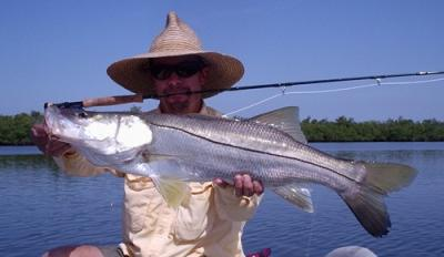 Tod's Simple Shrimp #2 produced this snook near Sebastian Inlet.&lt;br&gt;&lt;br&gt;John Kumiski&lt;br&gt;www.spottedtail.com&lt;br&gt;&lt;br&gt;