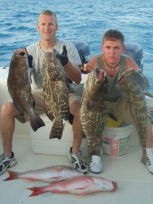 Nice grouper