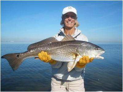 Mary Lynne's Hefty IRL Redfish <br><br>Captain Tom Van Horn<br><br>Mosquito Coast fishing Charters<br><br>(407) 416-1187 on the water<br><br>http://www.irl-fishing.com<br><br>