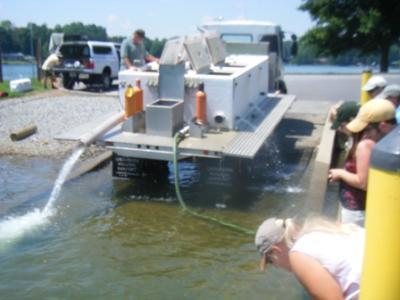 Photo courtesy of Capt. Gus - NCWRC Hatchery Truck releasing striped bass fingerlings at Stumpy Creek Access on June 2, 2009