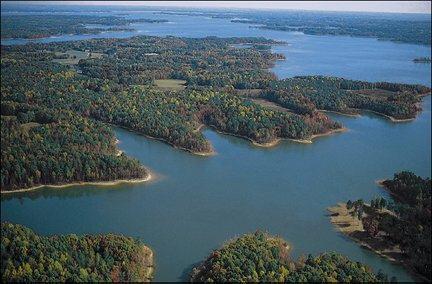 Kerr Lake Fishing Report on Buggs Island Lake  Kerr Reservoir    Anglerweb Com