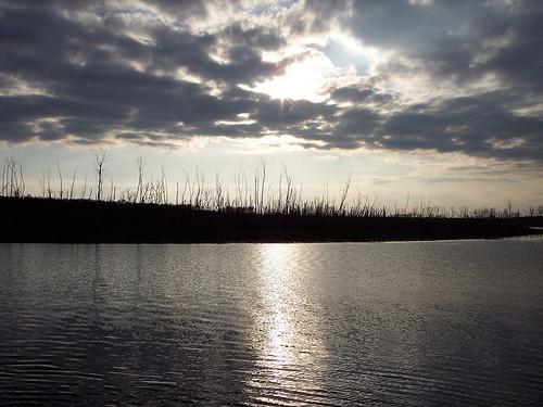 Lake waco anglerweb for Lake waco fishing report