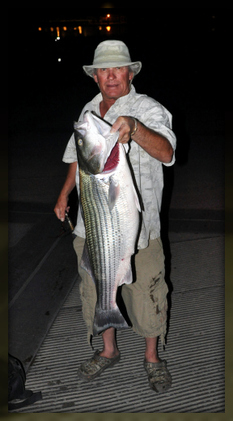 Capt. Billy Jack Miller owner of Rio Grande Guide Service caught this 35lb. Striped Bass at Sunset on a Pencil Popper on Elephant Butte Lake, NM . What a Rush!!! check out our sites. www.riograndeguideservice.com and Billy Jack Miller / FACEBOOK or Rio Grande Guide Service / FACEBOOK