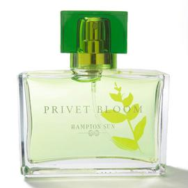 Privet Bloom Eau de Toilette Spray