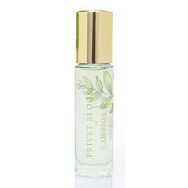 Privet Bloom Roll-On Perfume