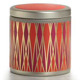 Desert Tulip Essential Travel Tin