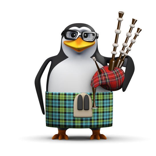 penguin scotland independence