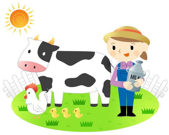 new zealand dairy exports
