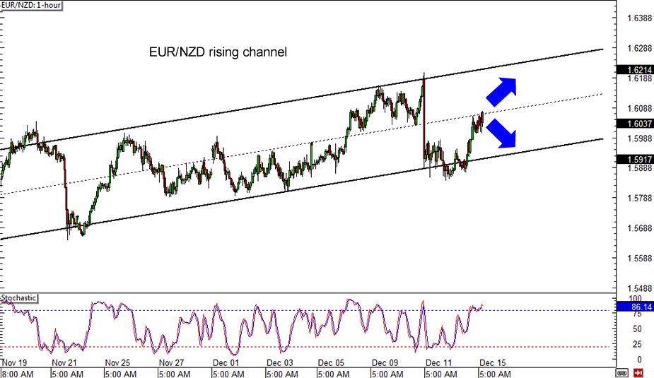 EUR/NZD 1-hour Forex Chart
