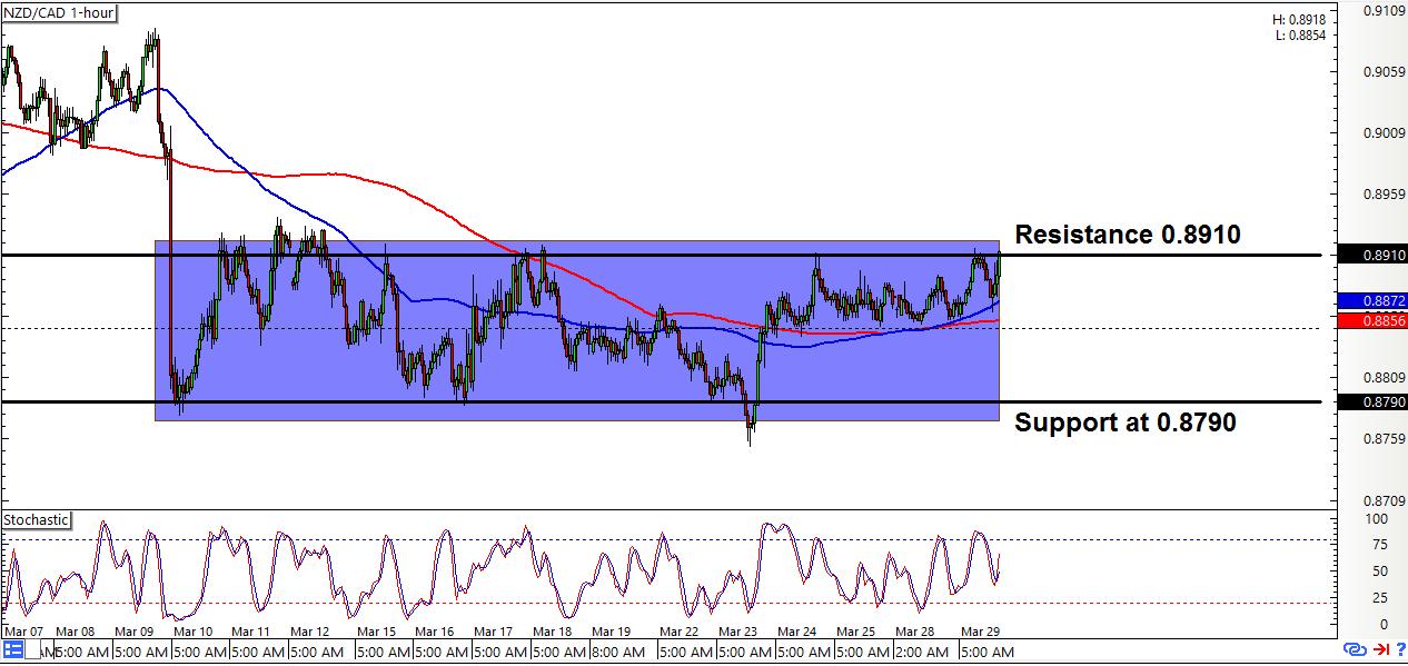 NZD/CAD: 1-Hour Forex Chart