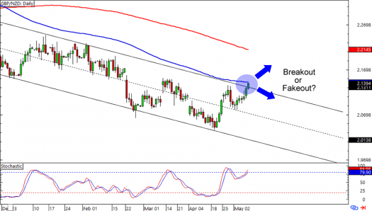 GBP/NZD: Daily Forex Chart