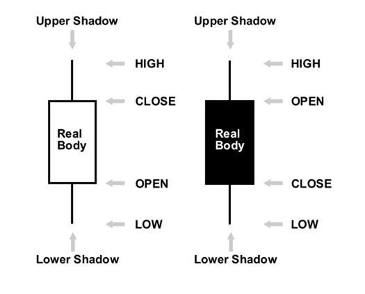 Japanese Candlestick Anatomy
