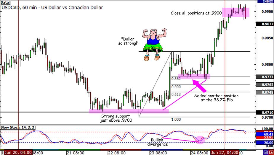 USD/CAD 310-pip Chart