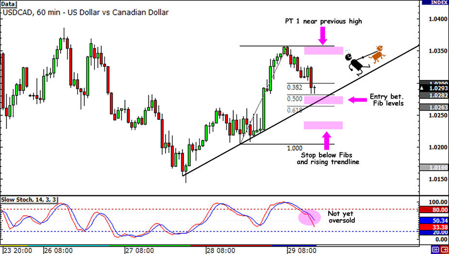 USD/CAD Parity Trade