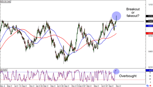 NZD/CAD: Daily Forex Chart