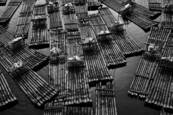 Li River Rafts by Don Russell