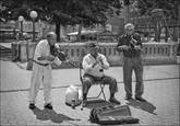 Street Musicians by Jack Knox