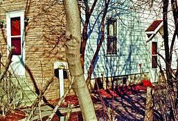 Doors_trees_red