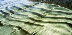 Sand_ripples