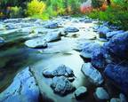 Greys_river_fall_colors