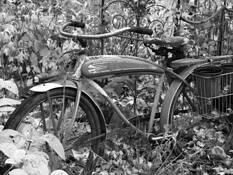 Abandoned_bike