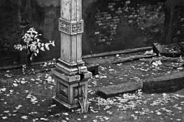 Old_columns