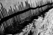 Shadow_fence