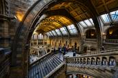 Museum_of_natural_history