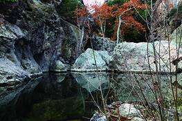 Rock_pool