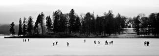 Skaters at bogstad