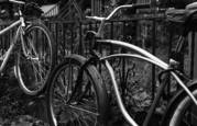 Bicycles by Jan Jaster