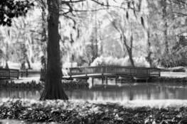 Edisto_gardens