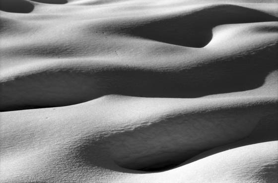 Snowdrift_1