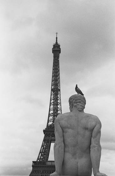 Tower_bird_statue