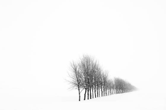 Untitled_03c