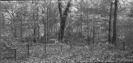 Running_fence