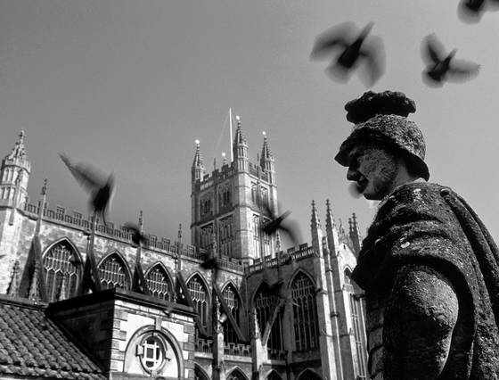 Birds_over_bath_abbey