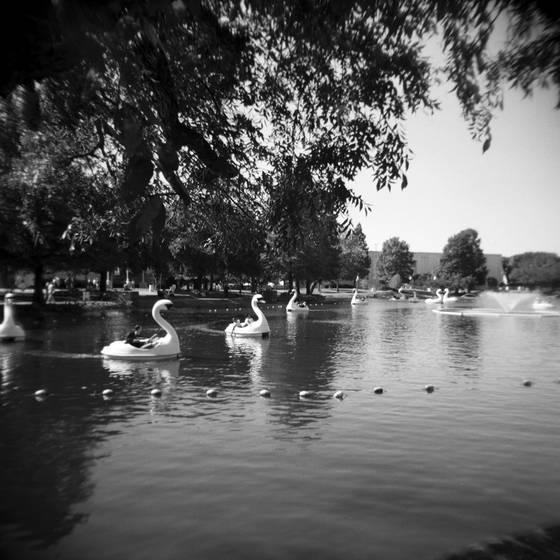 State_fair_pond