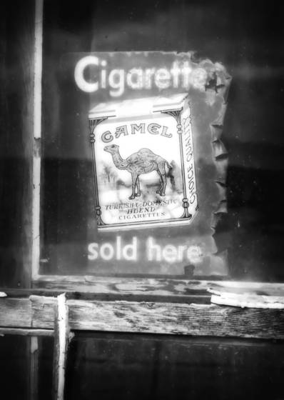 Camel_cigarettes
