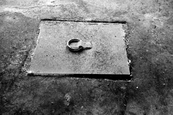 Trap_door