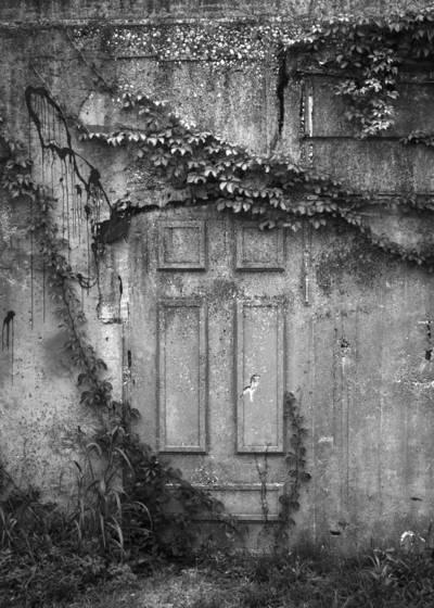 Garage_wall