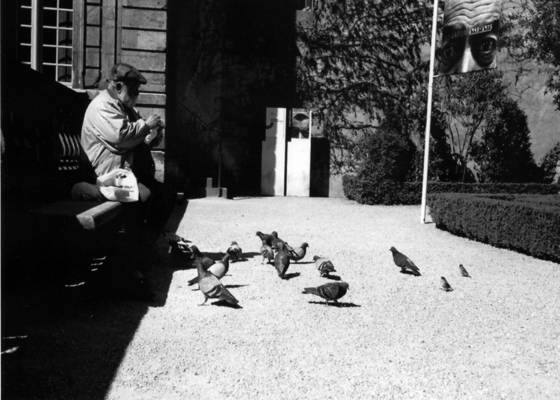 Man_feeding_pigeons