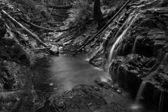 Roberts_creek
