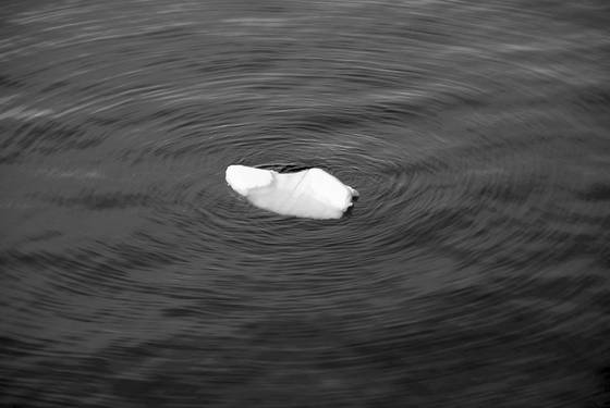 Tiny_iceberg