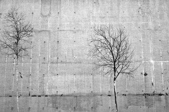 Urban_landscape